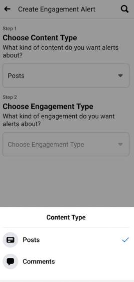 engagement type