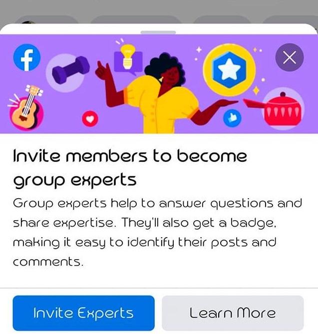 invite members as group expert